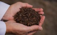 Фірма Return Home у США робить компост із покійних родичів