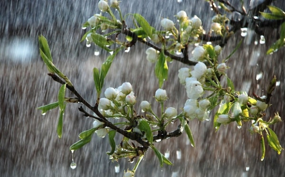 Погода на вихідні: на Волинь ідуть грози з градом