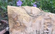 Забрали єврейські надмогильні плити, які були знайдені біля будинків. ФОТО