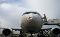 Вантажний літак зіткнувся зі зграєю птахів