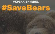 На балансі дитячої залізниці знайшли двох ведмедів