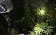 На Волині чоловік впав у глибоку яму, його діставали рятувальники