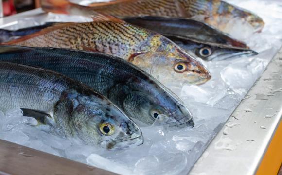 Як купити рибу та не отруїтись
