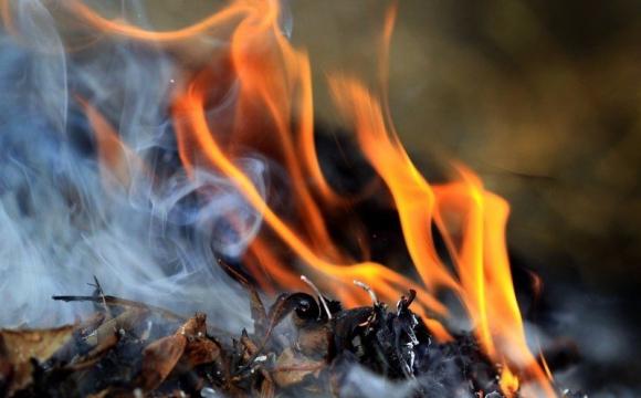 Штраф до 8 тисяч гривень: що чекає на волинян, які палитимуть листя