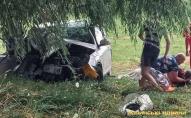 Страшна аварія у Луцькому районі: загинули двоє дорослих і дитина