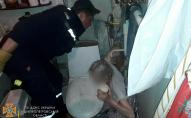 75-річна жінка застрягла у ванній і просиділа там кілька днів. ФОТО