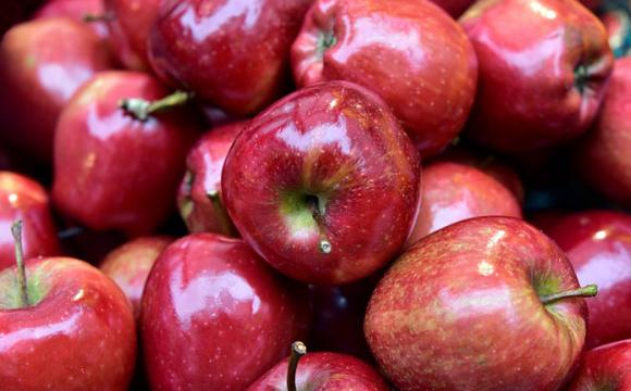 Високий урожай яблук знизить на них ціну