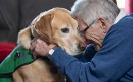 Собака врятував життя 65-річному господарю