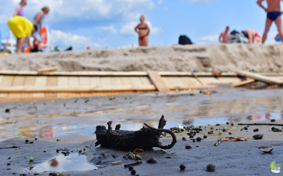 Мертві щури та зруйновані пляжі: наслідки аномальної зливи у Одесі. ФОТО