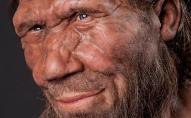 Вчені заявили, що неандертальці могли зимувати, як ведмеді