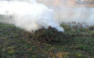 Оштрафували жінку, яка палила траву на Теремнівських ставках