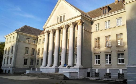 У Луцьку збираються облаштувати музейний дворик
