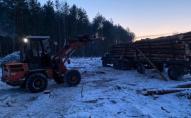 На Волині арештували повну вантажівку незаконно зрубаного дерева. ФОТО