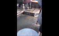 Водоспад по-волинськи: в Луцьку в маршрутці лилась брудна вода. ВІДЕО