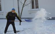 Небайдужі ковельчани разом з міським головою чистили сніг. ФОТО