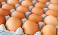 Що робиться із цінами на яйця перед Великоднем