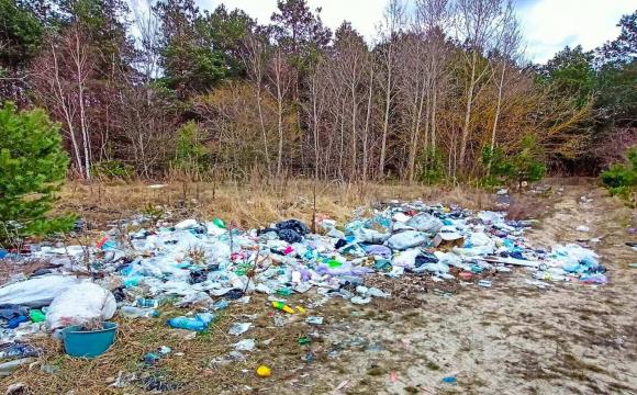 На Волині посеред лісу мешканці скидають сміття. ФОТО