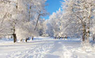 Наступного тижня обіцяють рясні снігопади і сильні морози