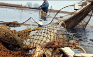 Виловили 269 цінних рибин: на Волині судитимуть батька та сина за браконьєрство