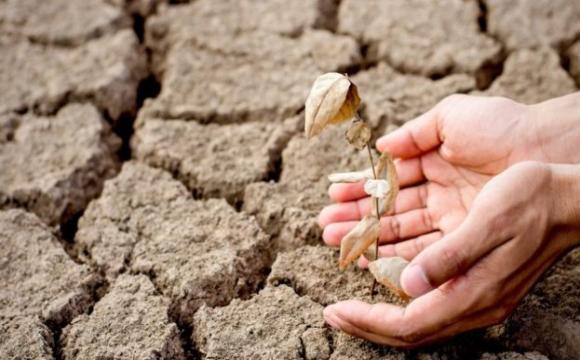 Україні загрожує серйозна посуха