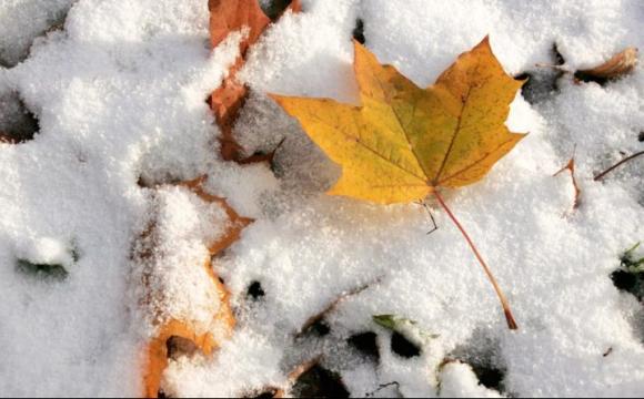 Завтра в Україні випаде перший сніг