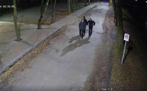 Камери зафіксували вандалів у луцькому парку: просять їх упізнати. ВІДЕО