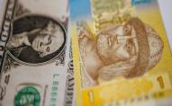 Після тривалого зростання гривня знову впала, - курс валют від Нацбанку
