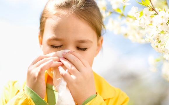 Продукти, які допоможуть побороти сезонну алергію