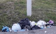 Поблизу замку Любарта просять встановити підземний сміттєвий контейнер