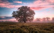 Яке свято відзначають віряни 12 вересня, прикмети та заборони