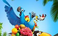 Майже Ріо: у Луцькому парку літають папуги. ВІДЕО