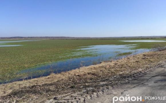 У Рожищенському районі затопило поля