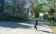 Рух перекритий: біля луцької школи на автомобілі впала верба