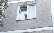 Застряг у вікні: як рятувальники кота визволяли. ФОТО