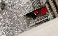 Самогубця, падаючи з вікна багатоповерхівки, травмувала чоловіка