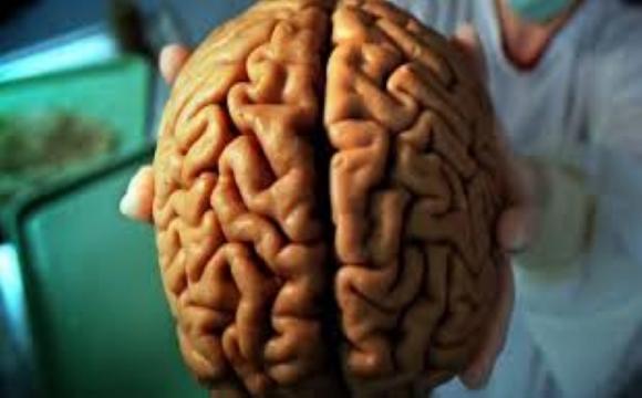 COVID-19 може стати причиною ураження головного мозку: відверто луцький медик про коронавірус. ВІДЕО
