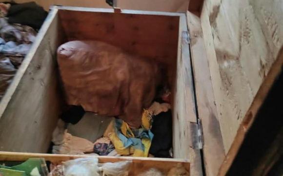 Дітей, яких мертвими знайшли у скрині, ймовірно жорстоко вбили