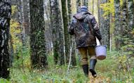На Волині у чотирьох грибників виявили небезпечну хворобу