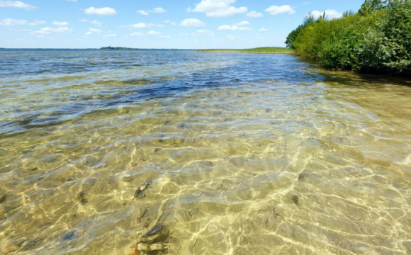 Підприємство на Волині присвоїло 200 га землі біля Шацьких озер