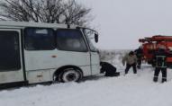 Під Торчином у сніговому полоні опинився автобус з пасажирами: викликали ДСНС