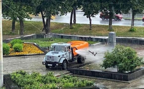 Води багато не буває: комунальник поливав клумбу під час дощу. ВІДЕО