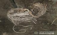 Двоє підлітків з Волині «відрізали» кілька сіл від інтернету та телефону. ФОТО