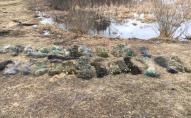 На Волині викрили 22 порушення природоохоронного законодавства