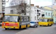 Чи буде в Луцьку їздити більше маршруток?
