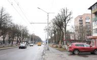 План реконструкції проспекту Волі просять показати назагал