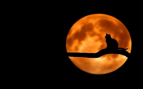24 липня - Золотий повний місяць: чим це небезпечно і як загадати бажання