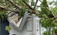 Негода лютує в Австралії: понад 40 тисяч будинків залишилися без світла. ФОТО