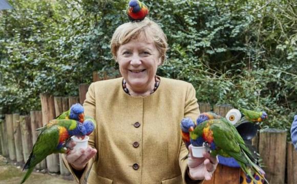 Хотіла погодувати: канцлера Німеччини вкусив папуга. ФОТО