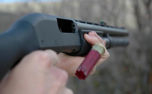 Біля Луцька підстрелили жінку, яка була на дачі. ВІДЕО