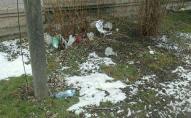 Сніг зійшов - сміття вилізло: луцькі узбіччя потопають у відходах